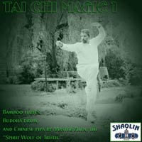 Album cover of TAI CHI MAGIC 1 by Buddha Zhen